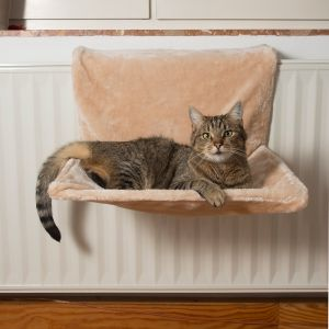 radiator bed